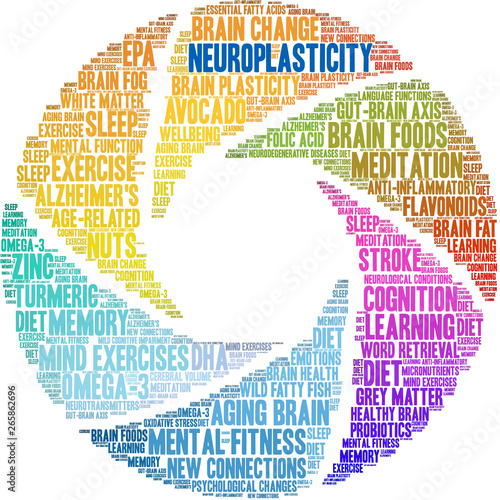 Neuroplasticity Word Cloud on a white background.  Wall mural