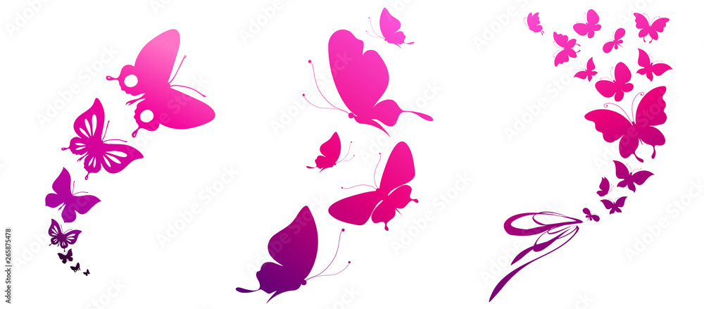 Fotografie, Obraz  beautiful pink butterflies, isolated  on a white