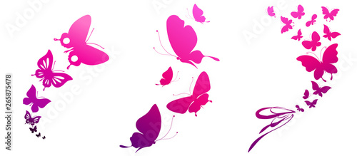beautiful pink butterflies, isolated  on a white Canvas Print