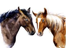 Watercolor Sweet Horses. Cute ...