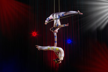 Circus Actress Acrobat Perform...