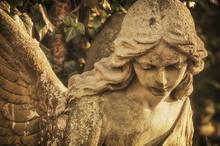 Face Of A Stone Antique Angel (religion, Faith Concept)