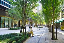 東京有楽町、木漏れ日の射す日比谷の新緑のプロムナード