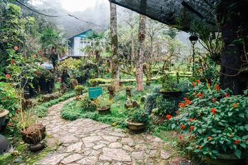 Ham Rong Mountain garden in Sapa, Vietnam