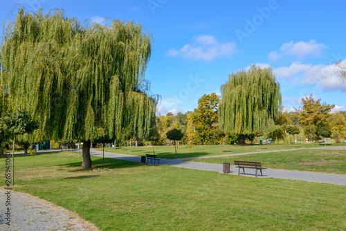 Fototapety, obrazy: Park w Sandomierzu