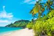 Leinwandbild Motiv Beautiful beach at tropical island with palm trees