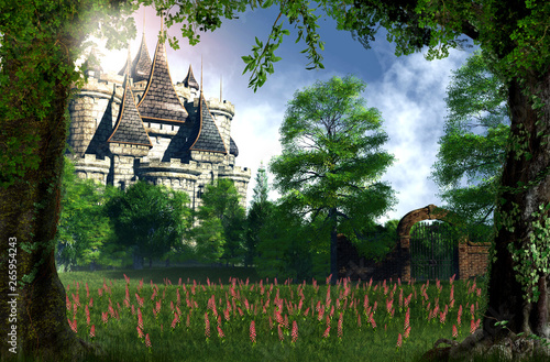 Enchanting hidden princess fairy tale castle