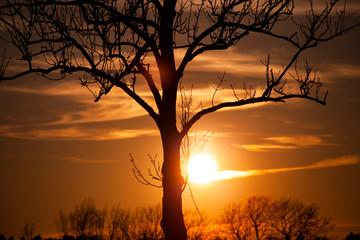 zachód słońca, wschód słońca, słońce, duże słońce, piękny zachód słońca, tapeta, pomarańczowo