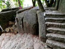 Old Stone Stairs  Ingrown Tree...