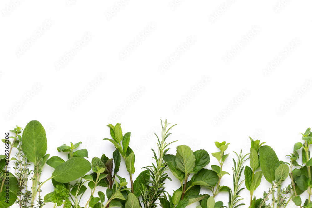 Fototapety, obrazy: Spice herbal leaves and chili pepper on white background. Vegetables pattern. Floral and vegetables on white background. Top view, flat lay.