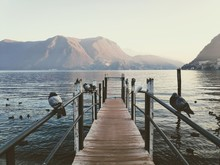 Landscape In Lugano With The M...