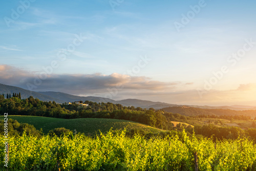 Tuscany, Italy landscape. Wonderful sunrise. Vineyards, hills, farm house. Unique tuscany landscape.