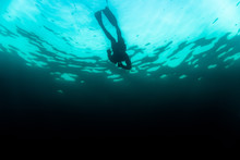 Freediver Diving Into The Deep Dark Blue Ocean Out The Shore From Norway.