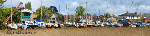 Fototapeta Woodbridge panorama with reeds and boats in yard.