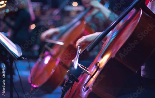 Carta da parati cello