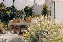Real Photo Of A Garden Furniture Decorated With Lamps. Close-up Of A Plant