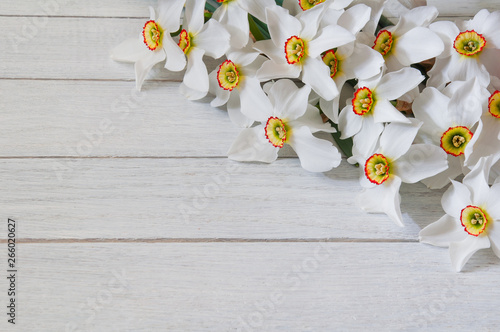 Cadres-photo bureau Narcisse White narcissus flowers on white wooden table