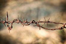 Corroded Barbed Wire In Old Style In Close Up