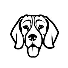 Beagle Dog - Isolated Outlined