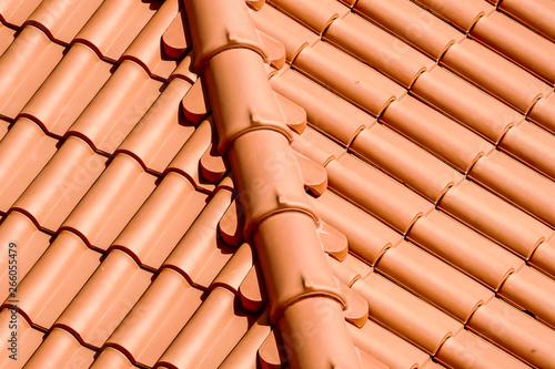 fototapeta na ścianę red roof tiles, in Lisbon Capital City of Portugal