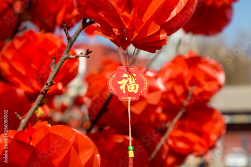 Garden Poster Pale violet Hang red lanterns for the New Year
