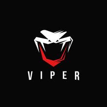 Aggresive Powerful Viper Snake...