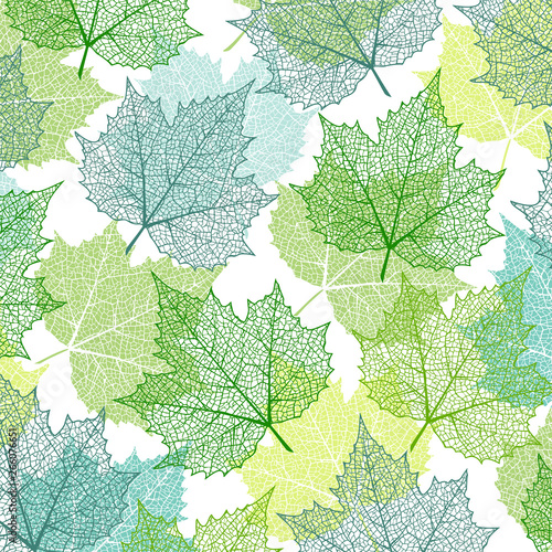 Plakaty zielone  background-with-blue-and-green-maple-leaves-nature-banner-frame-with-plants-template-for