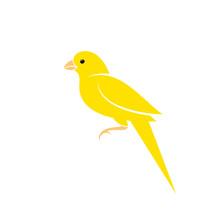 Canary Bird. Vector