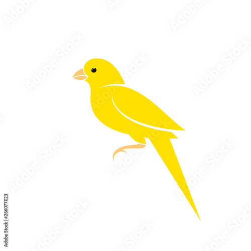 Fotografia Canary bird. Vector