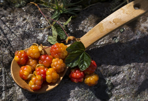 Photo Сloudberriy berries in the spoon on the stone