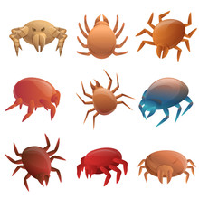 Mite Icons Set. Cartoon Set Of Mite Vector Icons For Web Design