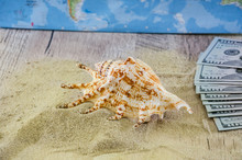 Dollars And Seashell On The Sand