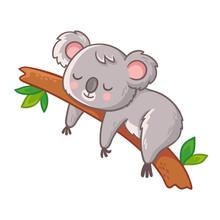 Cute Koala Is Sleeping On A Tree. Vector Illustration