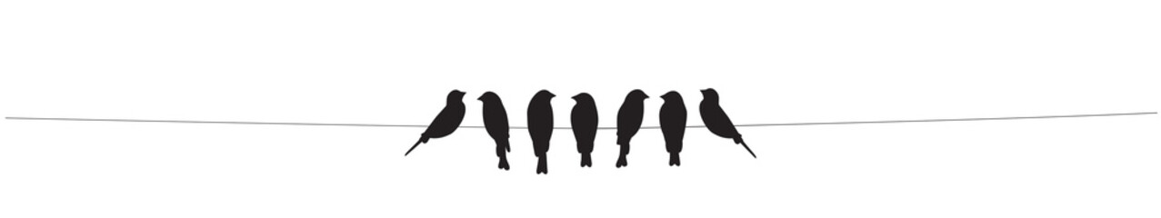 Birds on wire Vector, Birds...