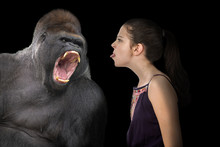 Brave Young Girl Defying An Angry Gorilla