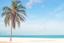 Strand Auf Aruba, Karibik