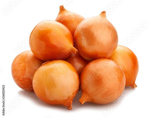 Fototapeta onions obraz