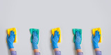 Fototapeta Coffie - Commercial cleaning company. Employee hands in blue rubber protective glove. General or regular cleanup.