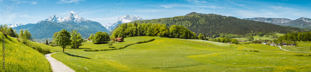 Fototapety, obrazy: Idyllic spring landscape in the Alps with meadows and flowers