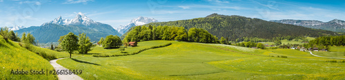 Idyllic spring landscape in the Alps with meadows and flowers - 266158459