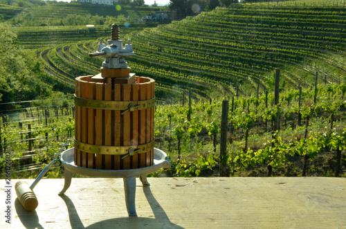 Fotografija Torchio vinario ft4105_0101 Wine press Kelter Pressoir vinicole Lagar