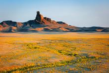 Wildflower Badlands In The Uta...