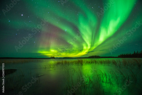 Wall Murals Northern lights Northern Lights