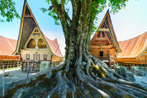 Batak traditional houses in a row, tree root in the foreground, teal orange look Canvas Print