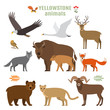 Set of forest animals, birds and plants in a cartoon style. Flat vector illustration isolate