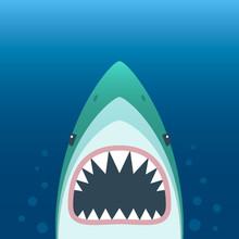 Shark With Open Mouth. Shark I...