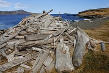 Icelandic Driftwood:  Logs, St...