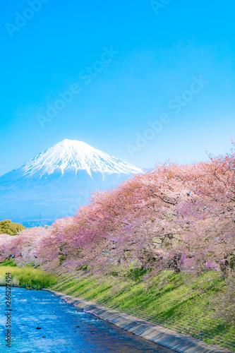Foto op Plexiglas Kersenbloesem Mount Scenery, Japan, Lake