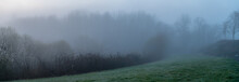 Panoramic View Of Path In The Park Leading To The Fog