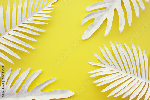 Collection of tropical leaves,foliage plant with color space background.Abstract leaf decoration design.Exotic nature art